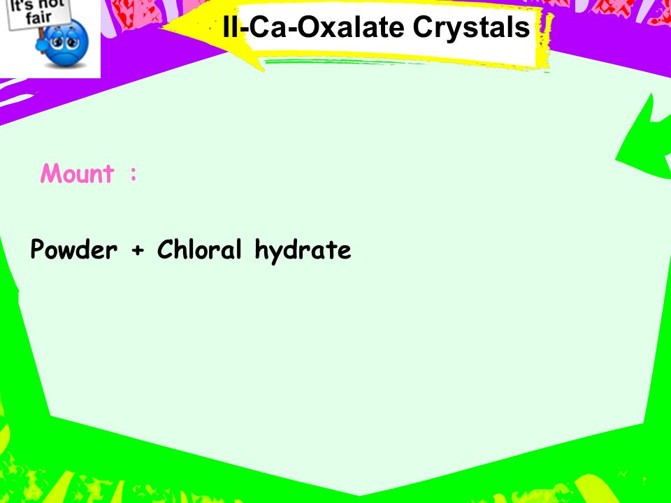 II-Ca-Oxalate Crystals