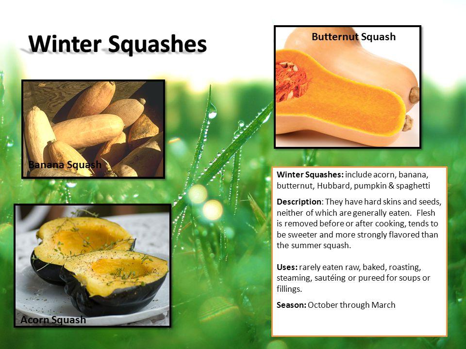 Winter Squashes Butternut Squash Banana Squash Acorn Squash
