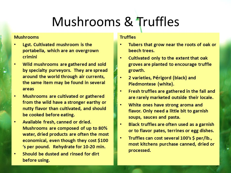 Mushrooms & Truffles Mushrooms