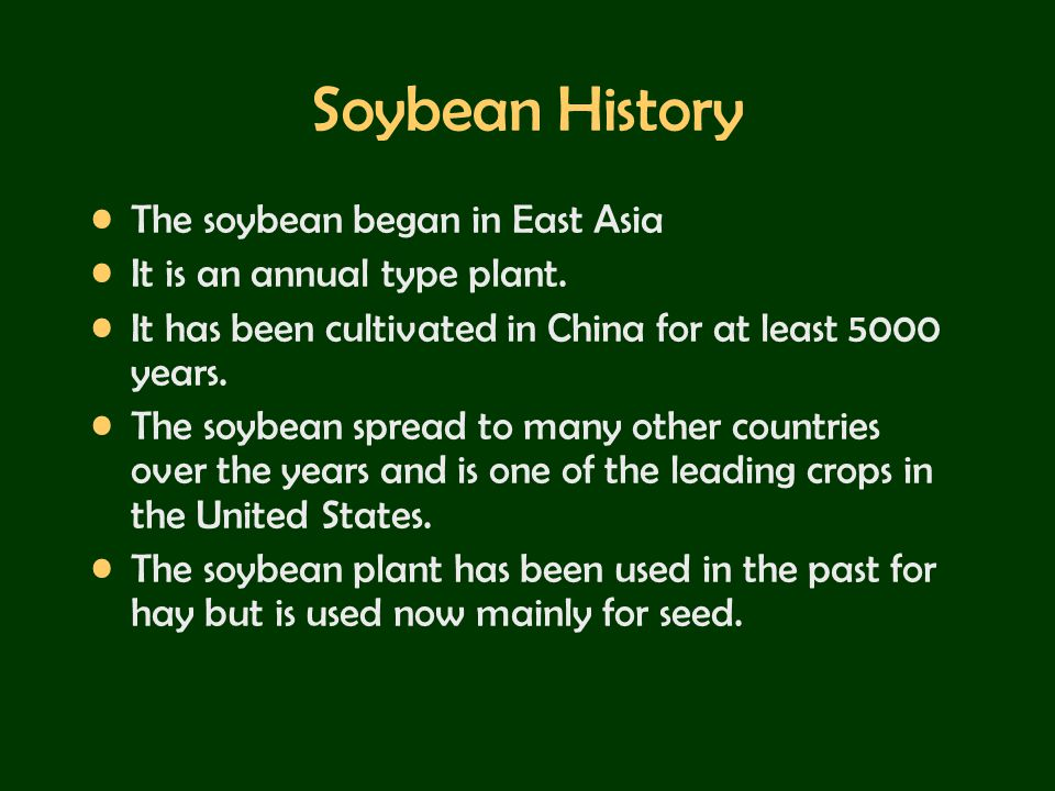 Soybean History The soybean began in East Asia
