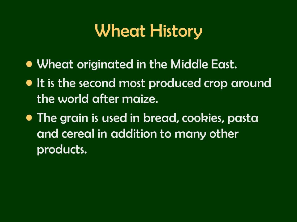 Wheat History Wheat originated in the Middle East.