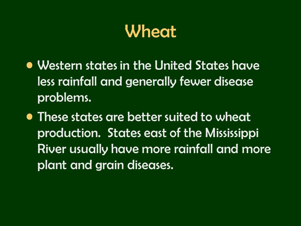 Wheat Western states in the United States have less rainfall and generally fewer disease problems.