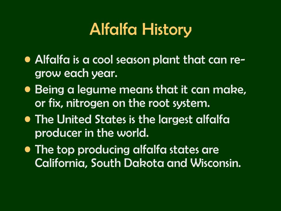 Alfalfa History Alfalfa is a cool season plant that can re-grow each year.