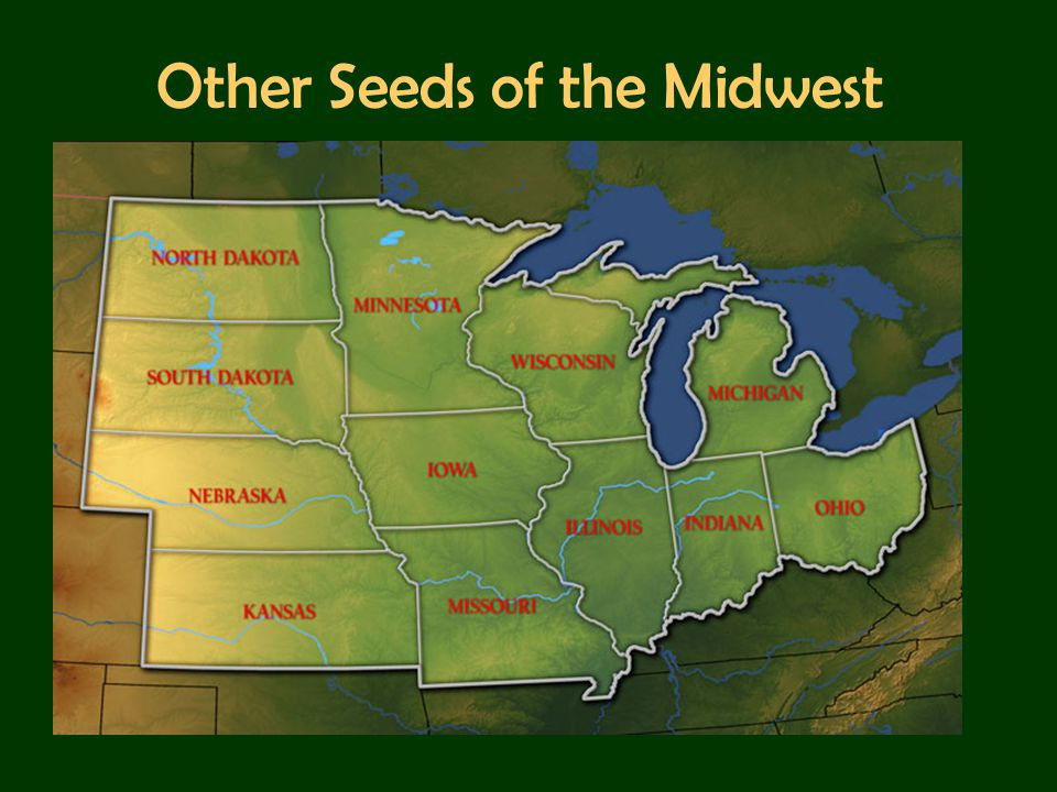 Other Seeds of the Midwest