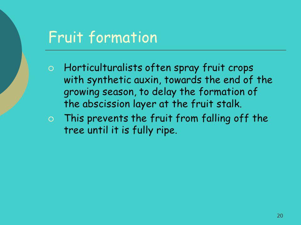 Fruit formation