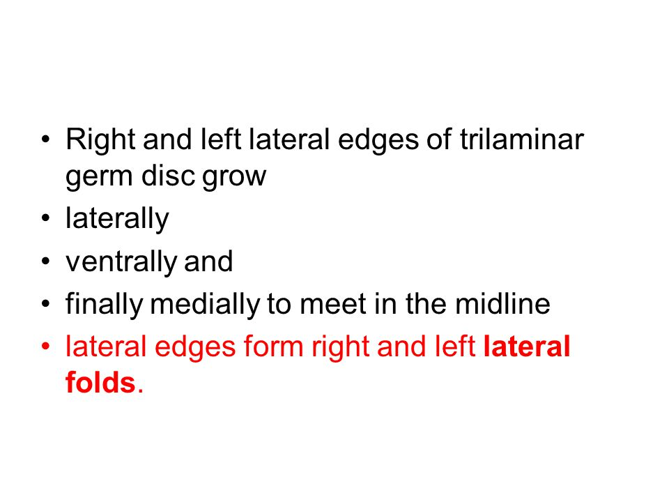 Right and left lateral edges of trilaminar germ disc grow