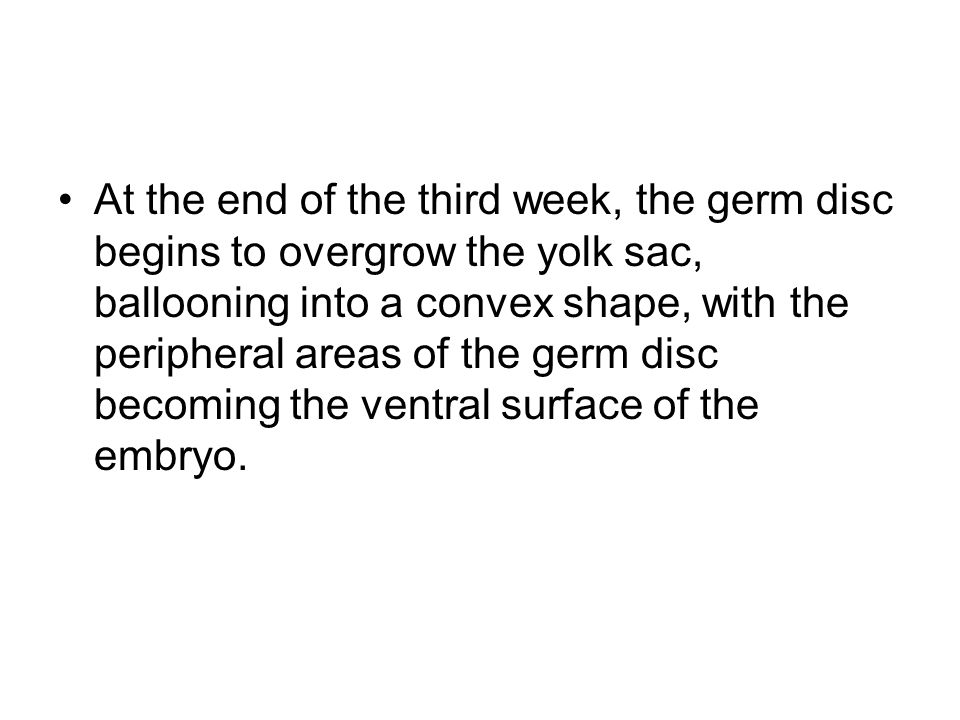 At the end of the third week, the germ disc begins to overgrow the yolk sac, ballooning into a convex shape, with the peripheral areas of the germ disc becoming the ventral surface of the embryo.