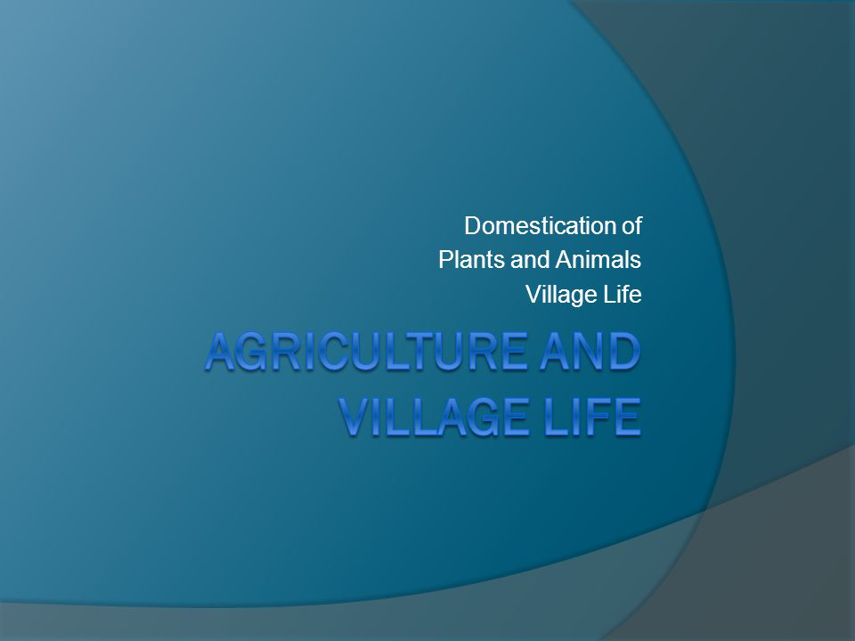 Agriculture and Village life