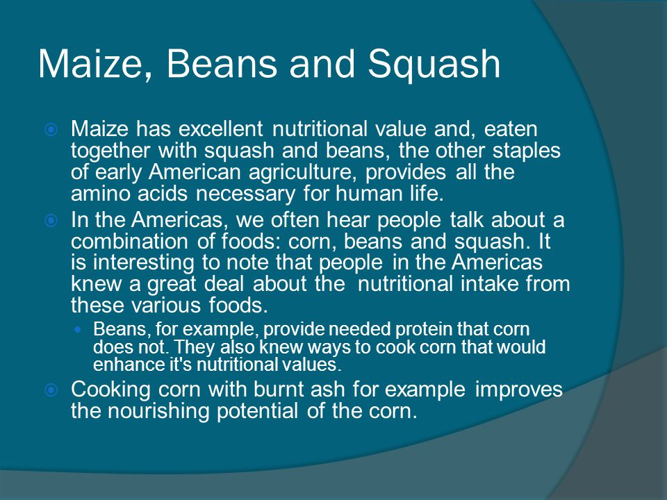 Maize, Beans and Squash