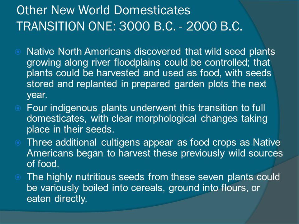Other New World Domesticates TRANSITION ONE: 3000 B.C. - 2000 B.C.