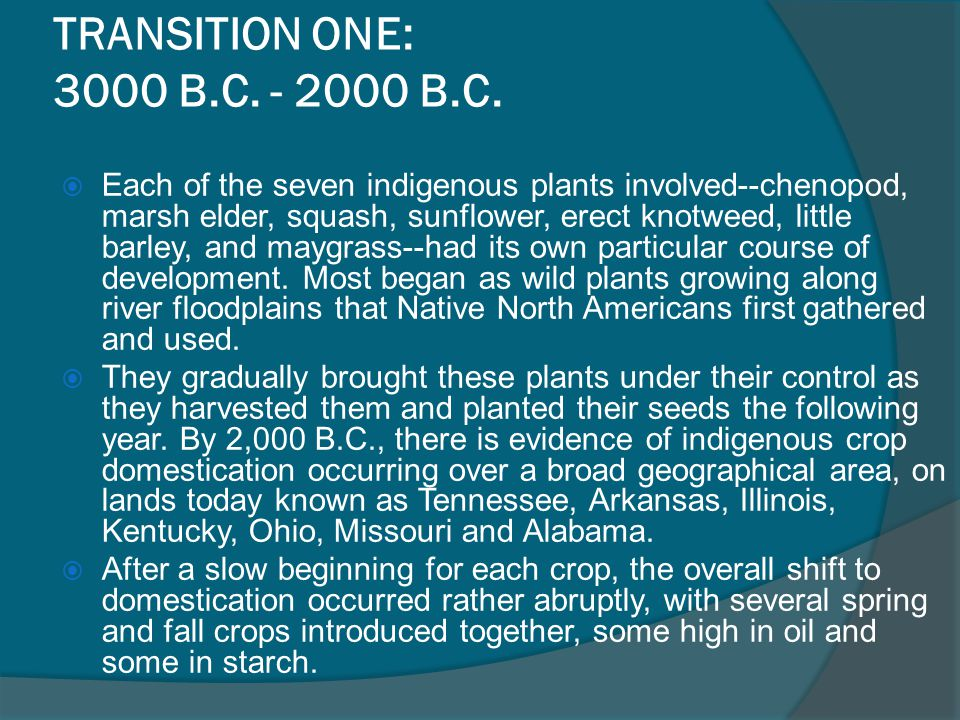 TRANSITION ONE: 3000 B.C. - 2000 B.C.