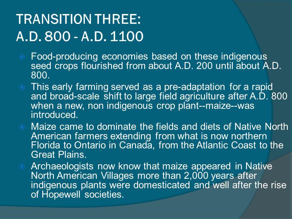 TRANSITION THREE: A.D. 800 - A.D. 1100
