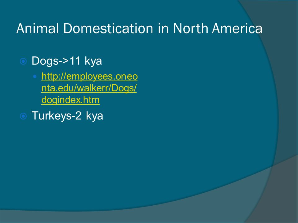 Animal Domestication in North America