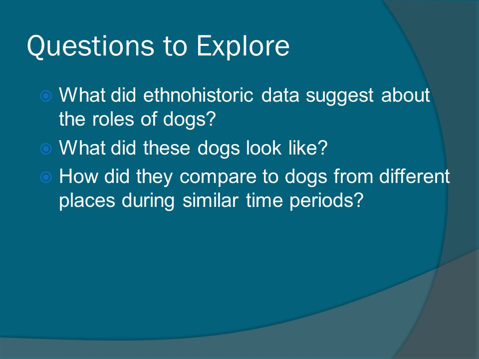 Questions to Explore What did ethnohistoric data suggest about the roles of dogs What did these dogs look like