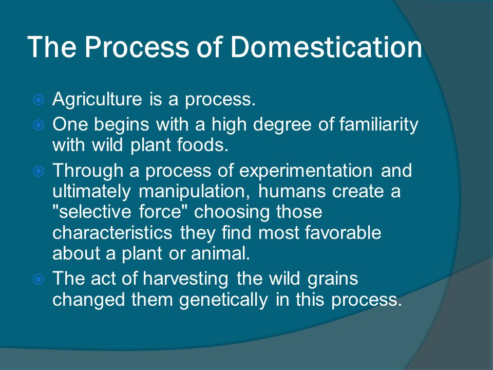 The Process of Domestication