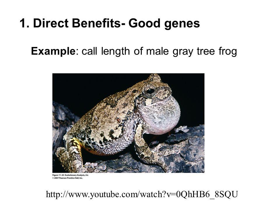 1. Direct Benefits- Good genes