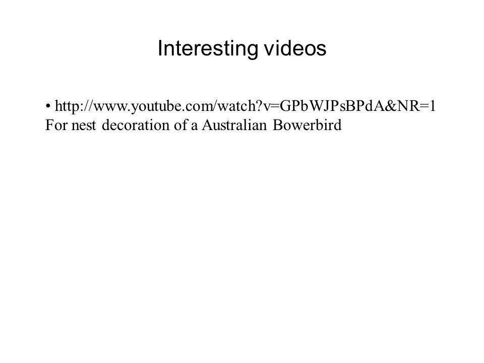 Interesting videos http://www.youtube.com/watch v=GPbWJPsBPdA&NR=1