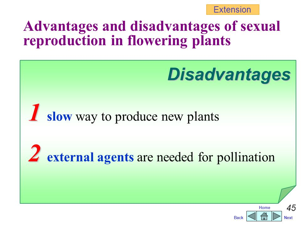 1 slow way to produce new plants