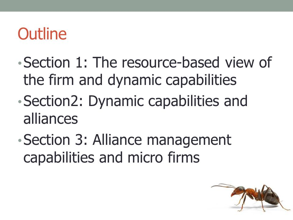 Outline Section 1: The resource-based view of the firm and dynamic capabilities. Section2: Dynamic capabilities and alliances.
