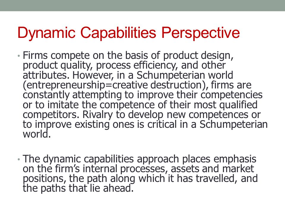 Dynamic Capabilities Perspective