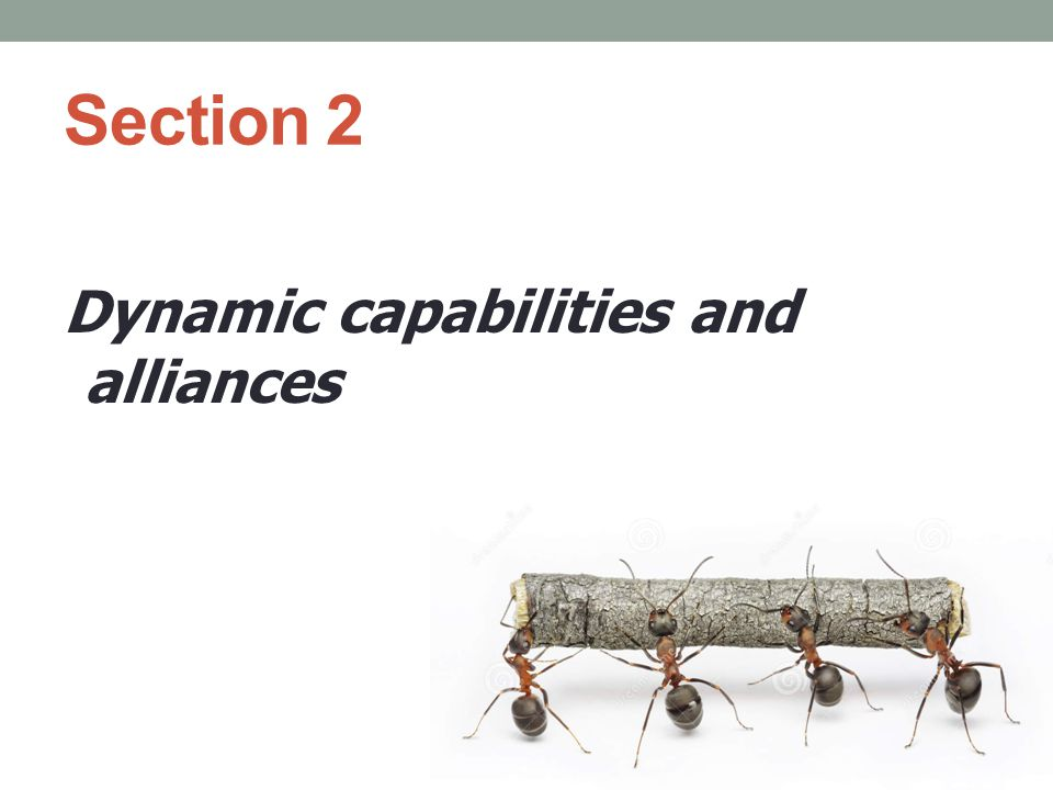 Section 2 Dynamic capabilities and alliances