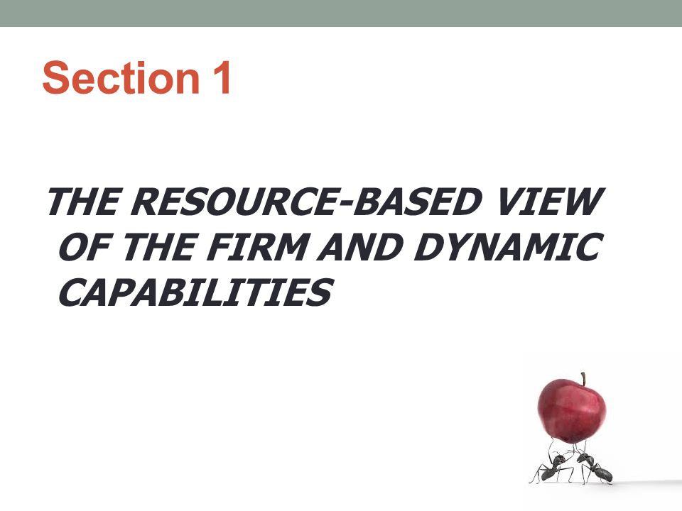 Section 1 THE RESOURCE-BASED VIEW OF THE FIRM AND DYNAMIC CAPABILITIES