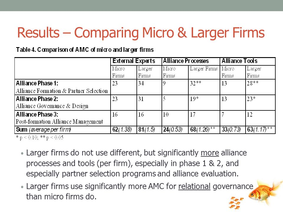 Results – Comparing Micro & Larger Firms