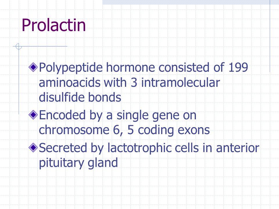 Prolactin Polypeptide hormone consisted of 199 aminoacids with 3 intramolecular disulfide bonds.
