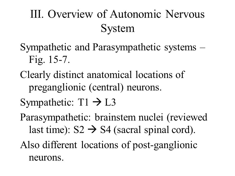 III. Overview of Autonomic Nervous System