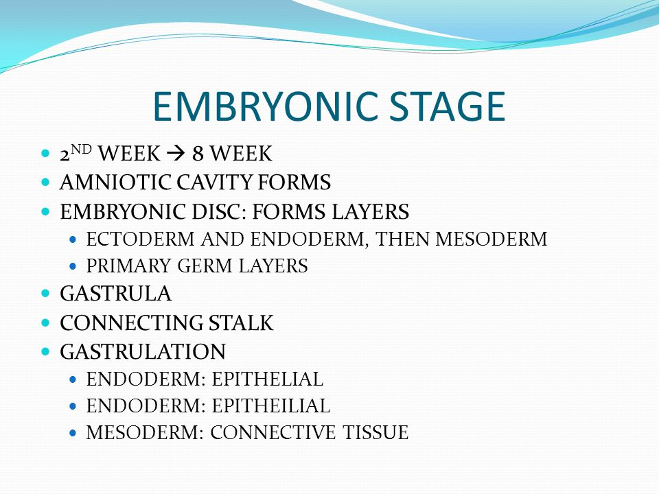 EMBRYONIC STAGE 2ND WEEK  8 WEEK AMNIOTIC CAVITY FORMS