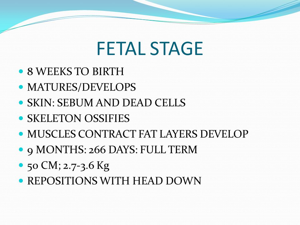 FETAL STAGE 8 WEEKS TO BIRTH MATURES/DEVELOPS