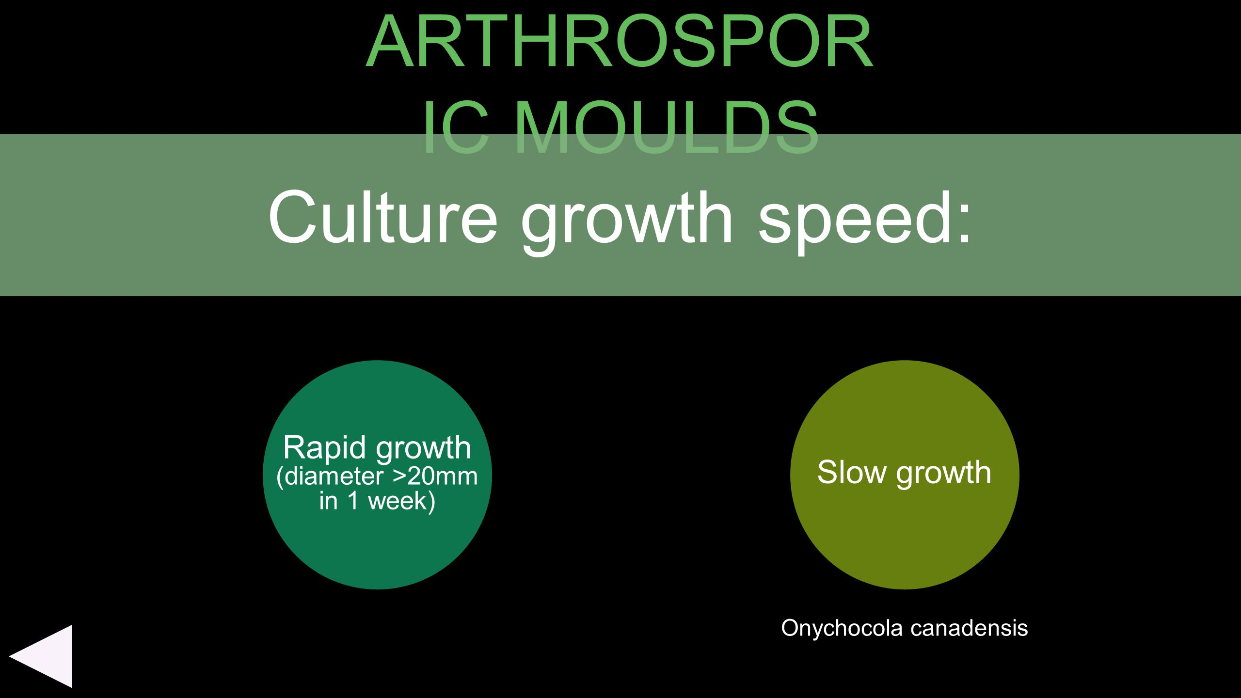 ARTHROSPORIC MOULDS Culture growth speed: