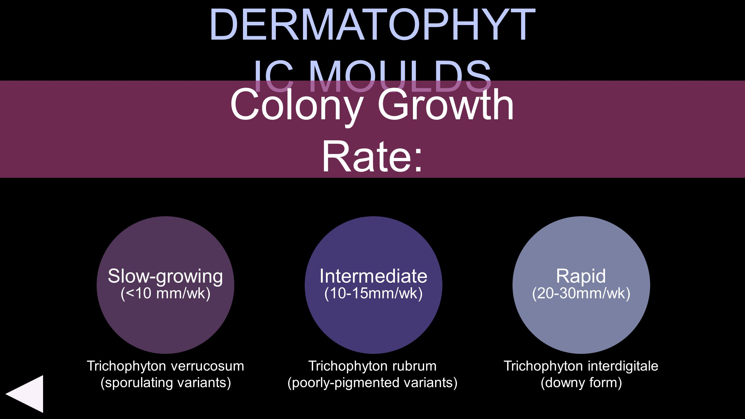 DERMATOPHYTIC MOULDS Colony Growth Rate: Slow-growing Intermediate