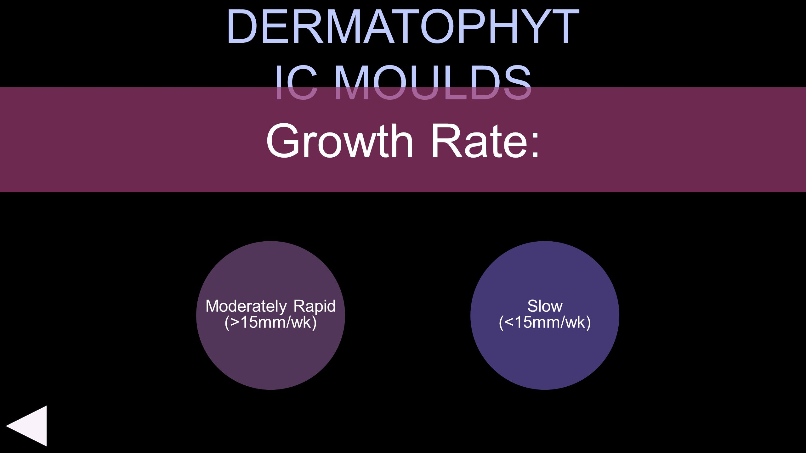 DERMATOPHYTIC MOULDS Growth Rate: Moderately Rapid (>15mm/wk)