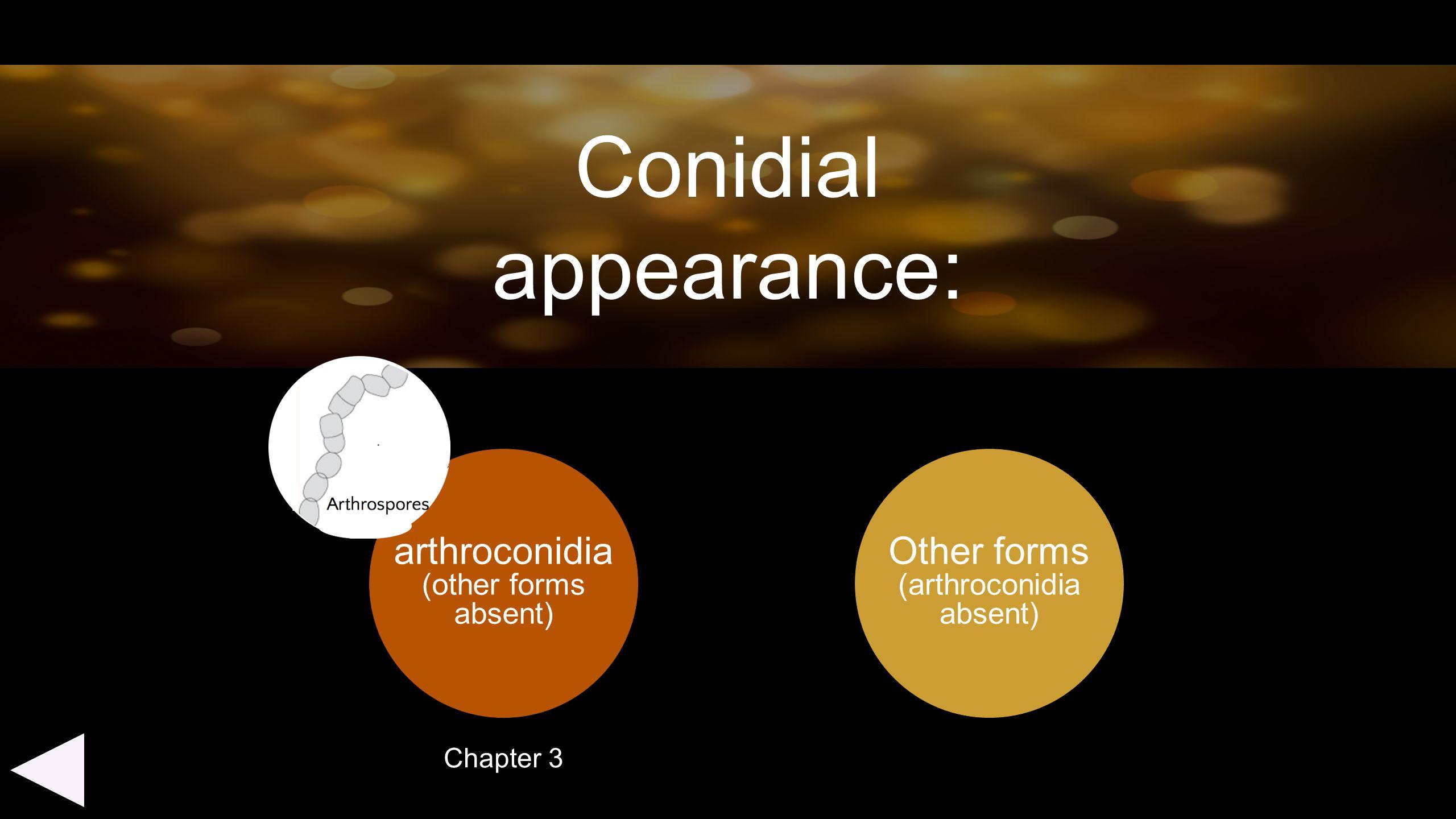 (arthroconidia absent)