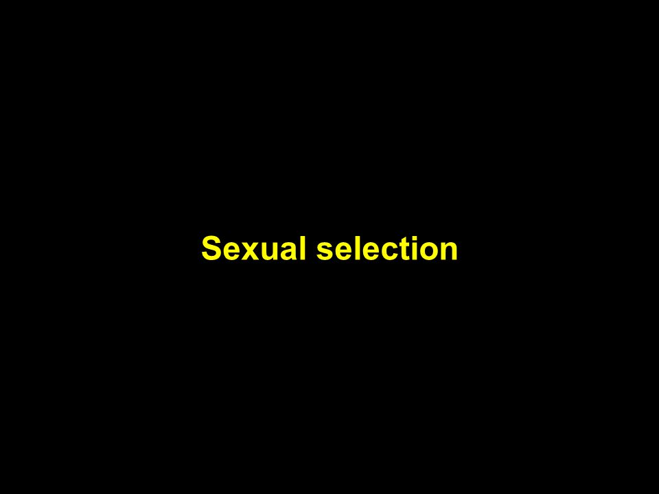 Sexual selection Sexual selection
