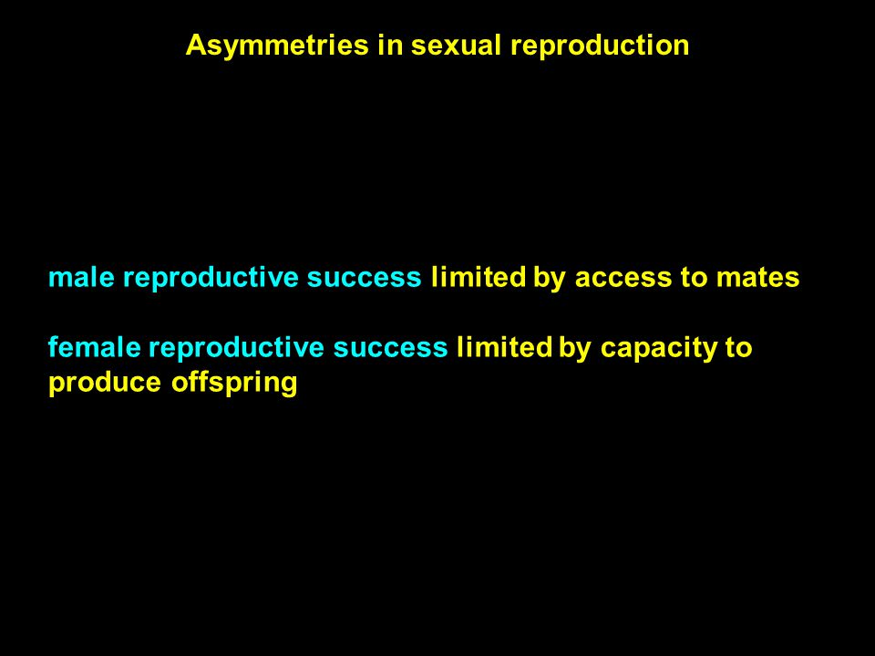 Asymmetries in sexual reproduction