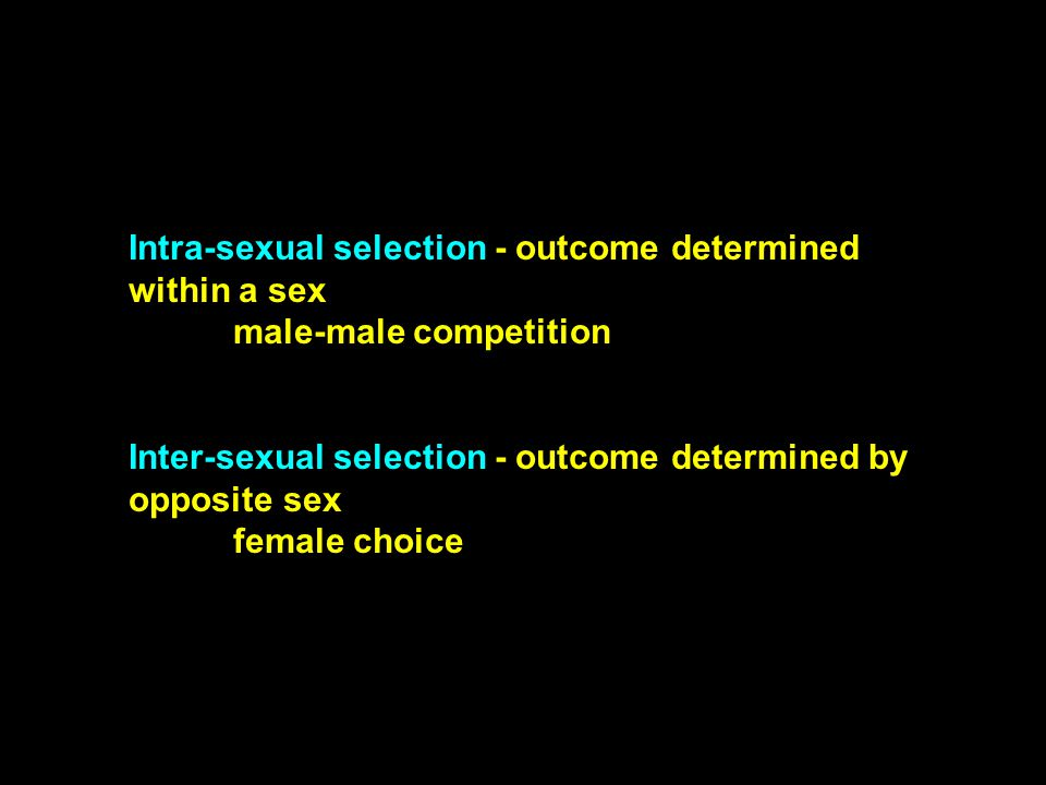Intra-sexual selection - outcome determined within a sex