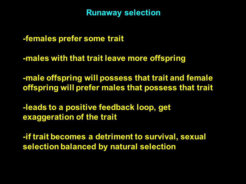 -females prefer some trait -males with that trait leave more offspring