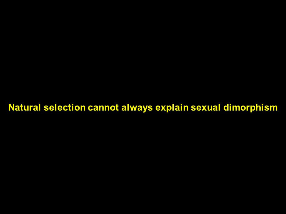 Natural selection cannot always explain sexual dimorphism