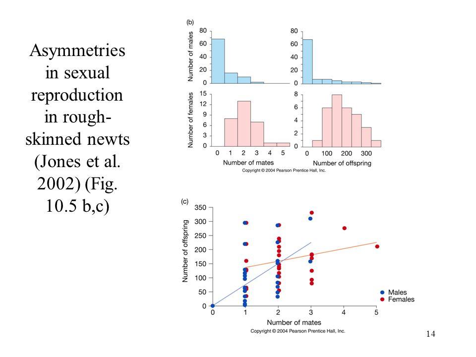Asymmetries in sexual reproduction in rough-skinned newts (Jones et al
