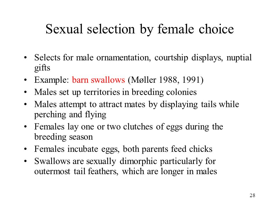 Sexual selection by female choice