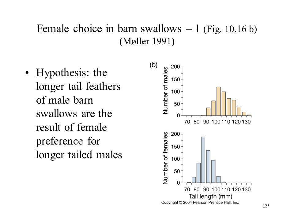 Female choice in barn swallows – 1 (Fig. 10.16 b) (Møller 1991)