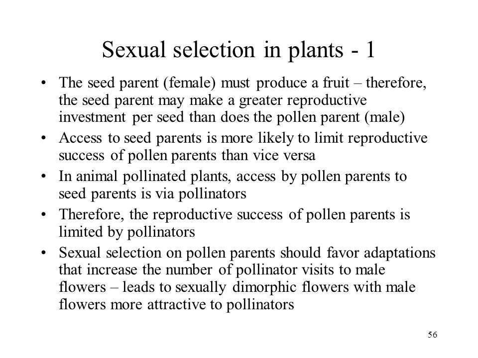 Sexual selection in plants - 1