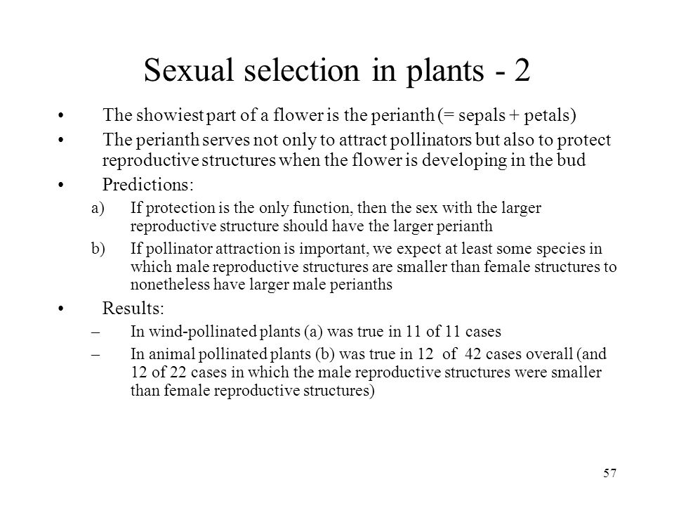 Sexual selection in plants - 2