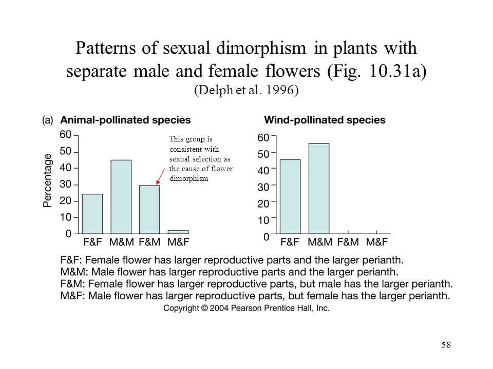 Patterns of sexual dimorphism in plants with separate male and female flowers (Fig. 10.31a) (Delph et al. 1996)