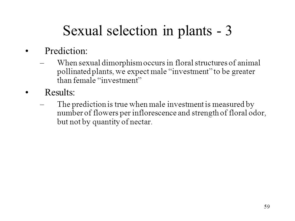 Sexual selection in plants - 3