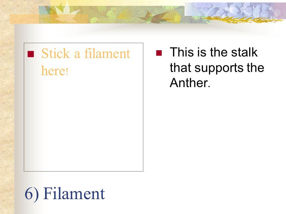 6) Filament Stick a filament here!