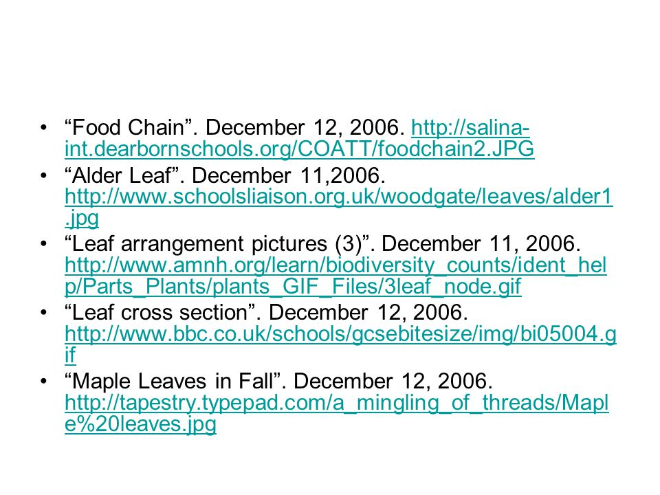 Food Chain . December 12, 2006. http://salina-int. dearbornschools