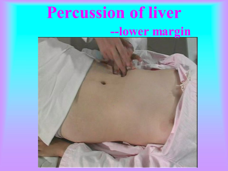 Percussion of liver --lower margin